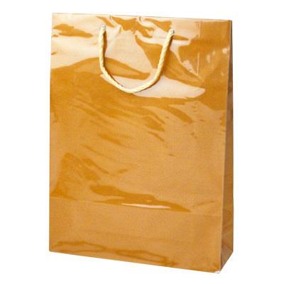 カバー付 手提げ紙袋 茶 L 5枚