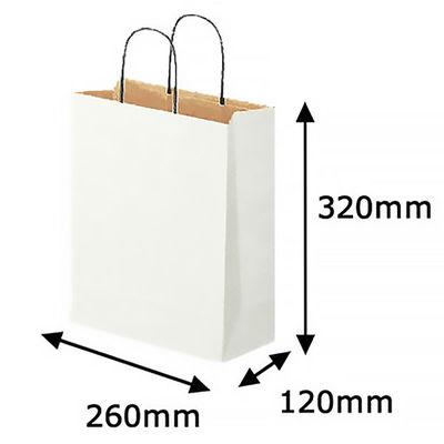 丸紐 手提げ紙袋 白 M 10枚