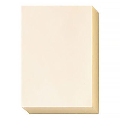 エイピーピー 色上質紙シナールカラー 中厚口 A4 アイボリー