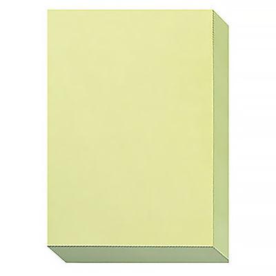 エイピーピー 色上質紙シナールカラー 厚口 A4 うぐいす