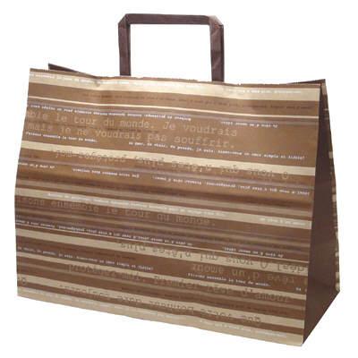 平紐 手提げ紙袋 ブラウン 平大 50枚