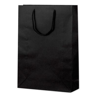 丸紐 手提げ紙袋 ブラック L 10枚