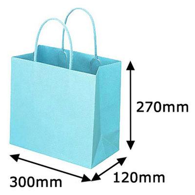 丸紐 手提げ紙袋 ブルー L 50枚