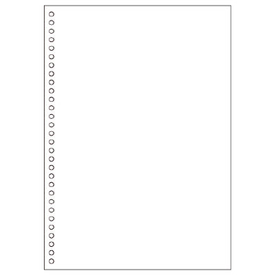 ヒサゴ A4白紙30穴 BPE2049 1箱(2500枚入) (取寄品)