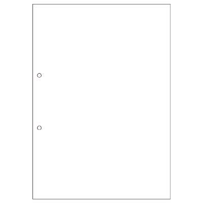 ヒサゴ A4白紙2穴 FSC2001 1冊(100枚入) (取寄品)