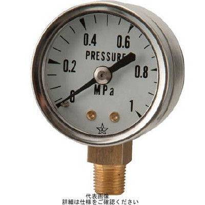 右下精器製造 スター (圧力計) S-01-0.4MP 1個 308-4141 (直送品)