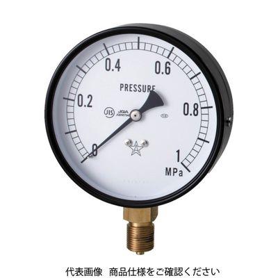 右下精器製造 スター (圧力計) S-31-0.6MP 1個 321-4010 (直送品)