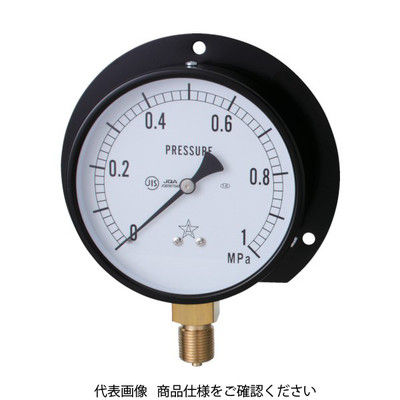 右下精器製造 一般圧力計 G321-211-M-0.6MP 1個 325-9757 (直送品)