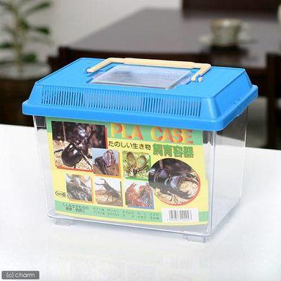 飼育容器 小 青 プラケース 昆虫 ザリガニ 両生類など 42064