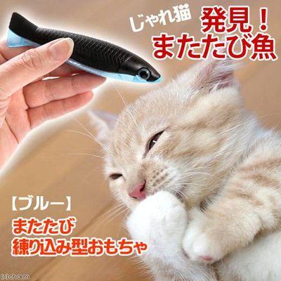 じゃれ猫 発見 またたび魚 ブルー