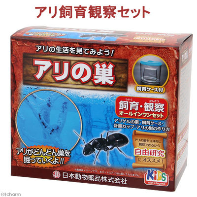 日本動物薬品 アリ飼育観察セット アリの巣 332586