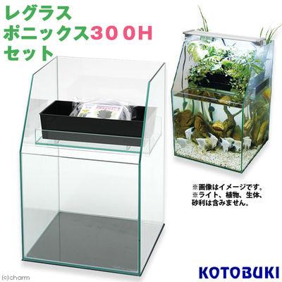 寿工芸 レグラスポニックス300Hセット 170634
