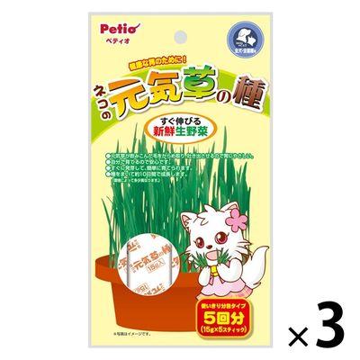 ネコの元気草の種 15g×5本入 猫草 76061 1セット(3個入)