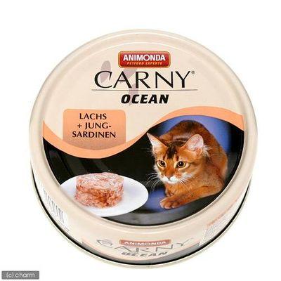 ジャーマンペット 猫用 キャット カーニーオーシャン サーモンとサーディン 80g 171135 1セット(6個入)