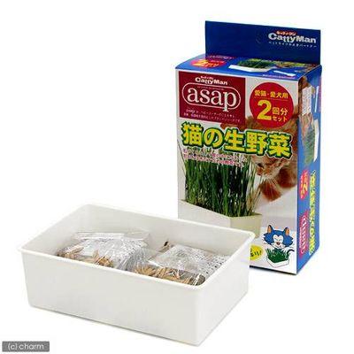 asap 猫の生野菜 2回分 猫草 68462 1セット(3個入)