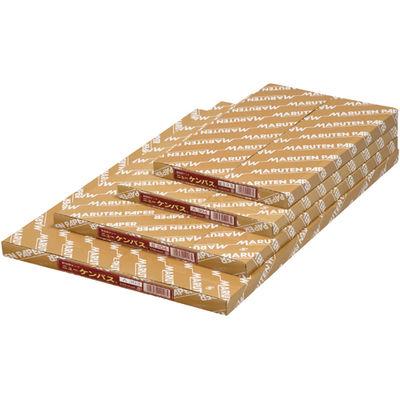 ゴークラ ケント紙 ニューケンパス B4 厚口 100枚 B504 1箱(直送品)