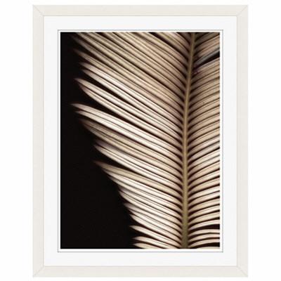アートプリントジャパン 「Palmistry by Nathan Griffith」 フレーム/S/ホワイト 1枚
