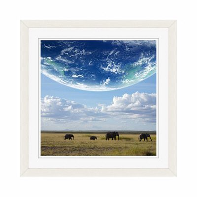 アートプリントジャパン 「地球とアフリカ象」 フレーム/S/ホワイト 1枚