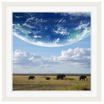 アートプリントジャパン 「地球とアフリカ象」 フレーム/M/ホワイト 1枚