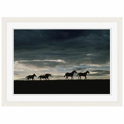 アートプリントジャパン 「馬の群れのシルエットと空(灰色)」 フレーム/S/ホワイト 1枚
