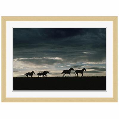 アートプリントジャパン 「馬の群れのシルエットと空(灰色)」 フレーム/S/木目 1枚