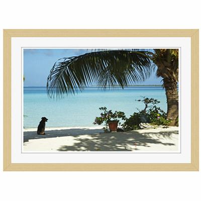 アートプリントジャパン 「lagoon with palm frand and watch dog」 フレーム/S/木目 1枚