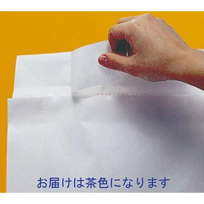 「現場のチカラ」 宅配袋茶無地大 フィルムなし 封緘シール付 1箱(200枚入) スーパーバッグ