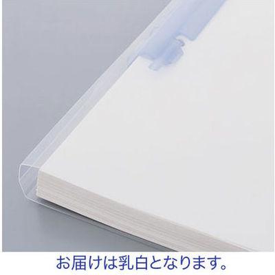 プレゼンファイル リヒトラブ ルーパーファイル A4タテ150枚とじ 乳白 F-3016-5P 25冊