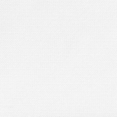 ポリエステルレースプリーツカーテンオフ白