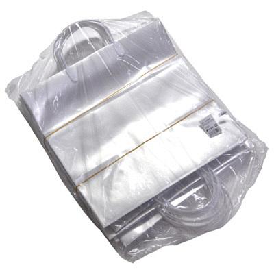 手提げ紙袋 パール 小 10枚