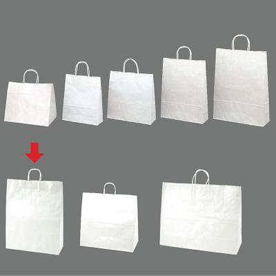 手提げ紙袋 白 特々大 10枚