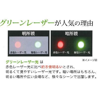 エスティーシー 緑色レーザーポインター