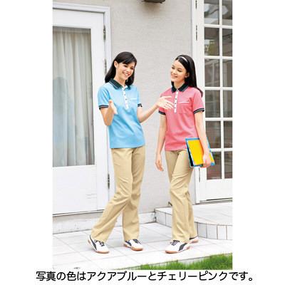 カーシーカシマ ポロシャツ アクアブルー 3L HM-2179c/6 3L (取寄品)