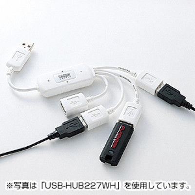 サンワサプライ USBハブ(USB HUB) USB2.0ハブ ブラック 4ポート バスパワー USB-HUB227BK 1個 (直送品)