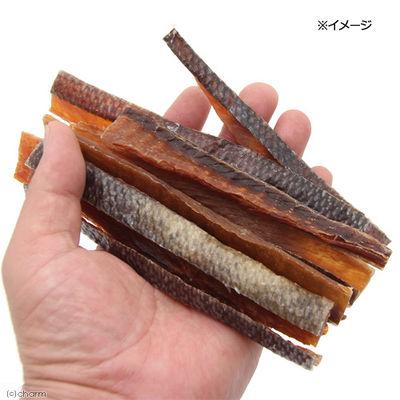 ぱっくん・フーズ 北海道産 鮭のジャーキー 90g 真空パック 無着色 犬用おやつ 174503 1セット(2個入)