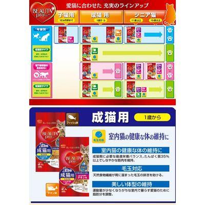 日本ペットフード ビューティープロ キャット チキン味 600g(150g×4袋) 163361 1セット(3個入)