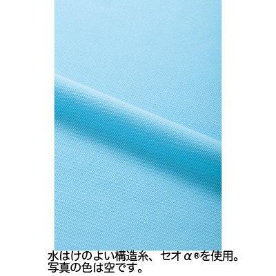 カーシーカシマ ポロシャツ 空 SS HM-2439c/6 SS (取寄品)