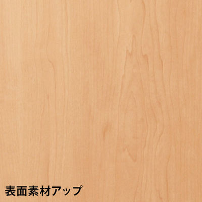 ARAN WORLD エイドス ハイカウンター 幅900mm専用棚板 (取寄品)