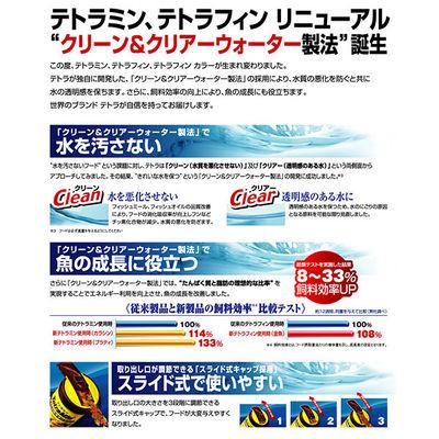 スペクトラム ブランズ ジャパン テトラミン NEW 52g 熱帯魚 餌 170836