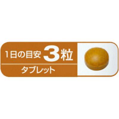 小林製薬ウコン 約30日分 90粒