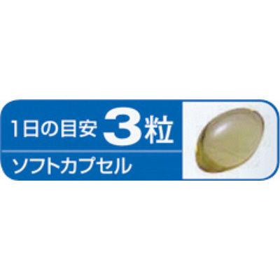 小林製薬DHA 約30日分 90粒