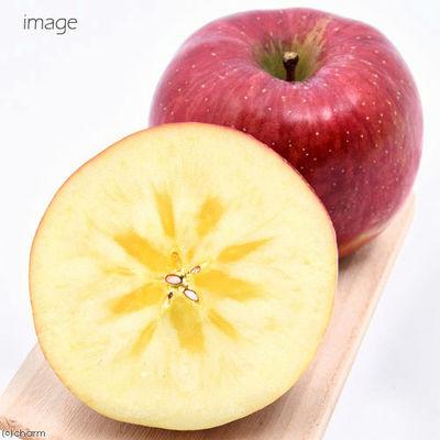 平成29年産 信州小布施産 蜜入りふじりんご 30g 犬用おやつ 196977