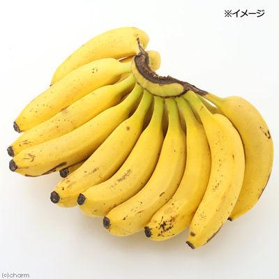 平成29年産 フルーツチップス バナナ 40g フルーツ&ベジ 174756 1セット(3個入)