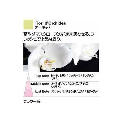 Millefiori センテッドスティック(L) オーキッド DIF-L-024 1セット (直送品)