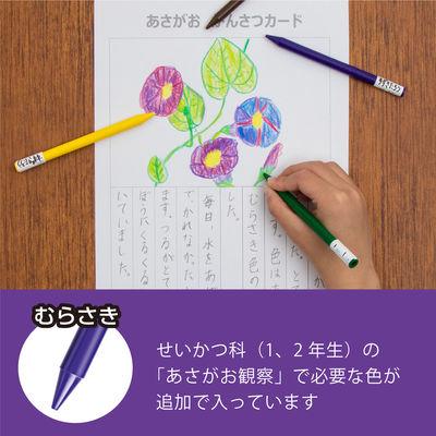 小学校色えんぴつ 基本12色+3色 全芯