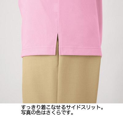 カーシーカシマ ポロシャツ 空 L HM-2439c/6 L (取寄品)