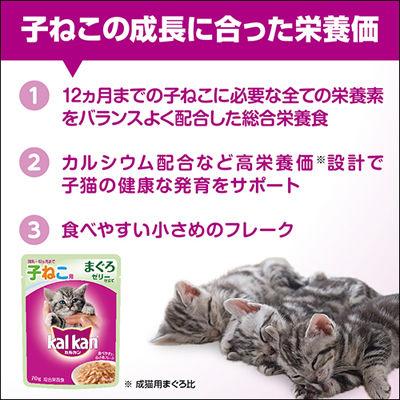 箱売カルカン 子猫お魚ミックス×160
