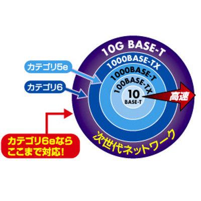サンワサプライ エンハンスドカテゴリ6LANケーブルのみ KB-T6E-CB300N 1個 (直送品)