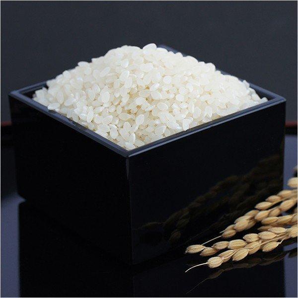 新潟県産コシヒカリ 30年度産 新潟産コシヒカリ 10kg (5キロ×2袋=10キロ)プレゼント 実用的