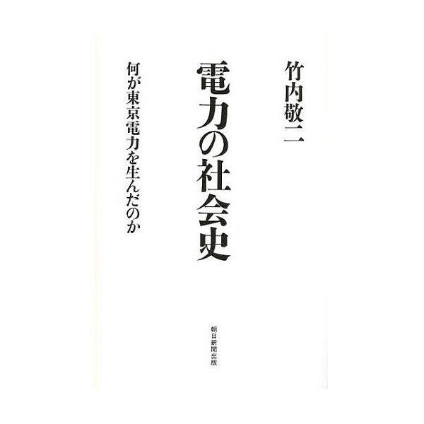 電力の社会史 何が東京電力を生んだのか/竹内敬二
